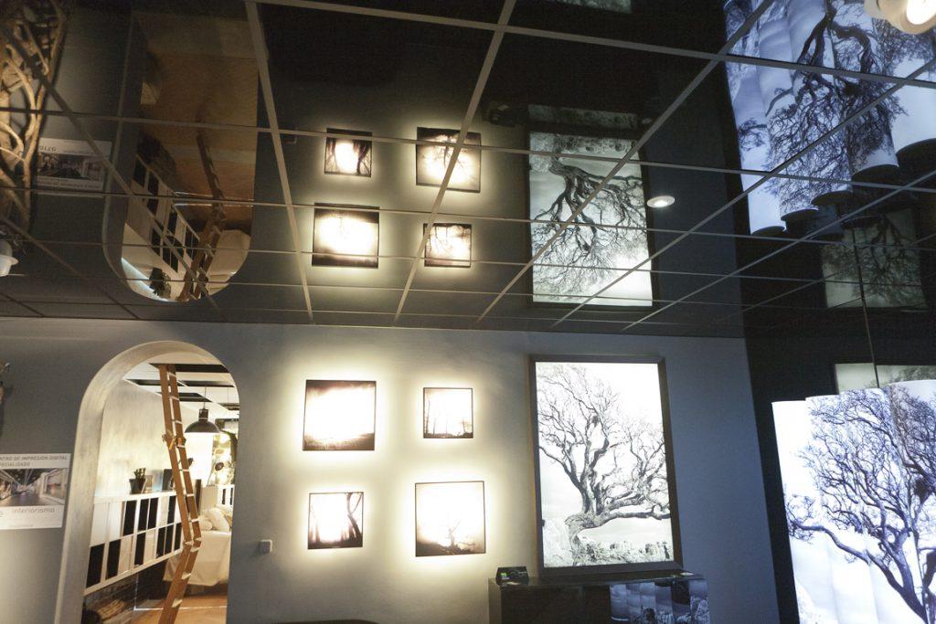 Espacio clorofila digital en casa decor madrid 2011 - Interioristas en madrid ...