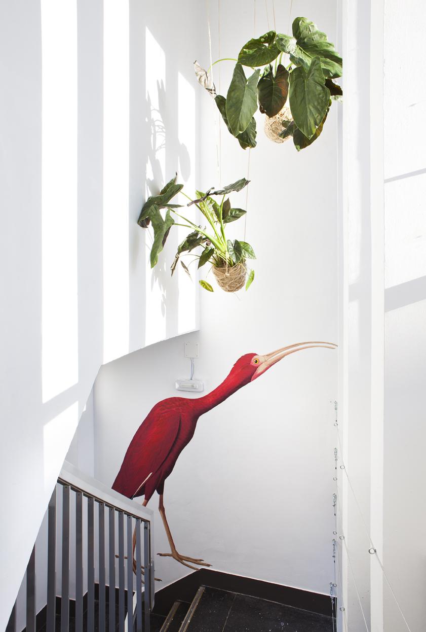 Escaleras decoradas – «Vivarium»