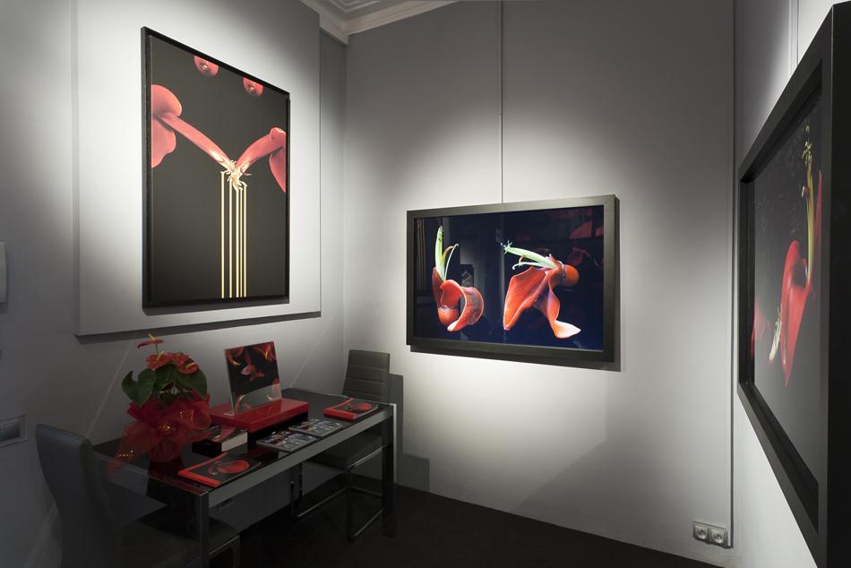 casa-decor-barcelona-2011-galeria-javier-abella-002