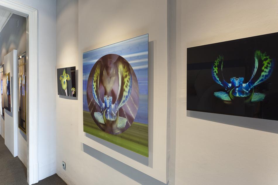 casa-decor-barcelona-2011-galeria-javier-abella-007