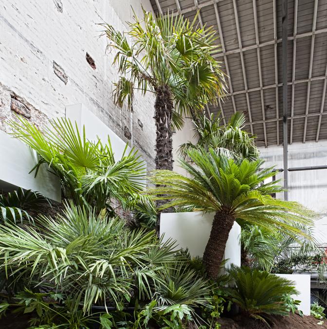 Jardín primigenio – «NATURA»