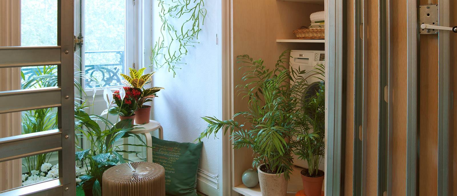Mini piso – «¿Vestidor o apartamento?