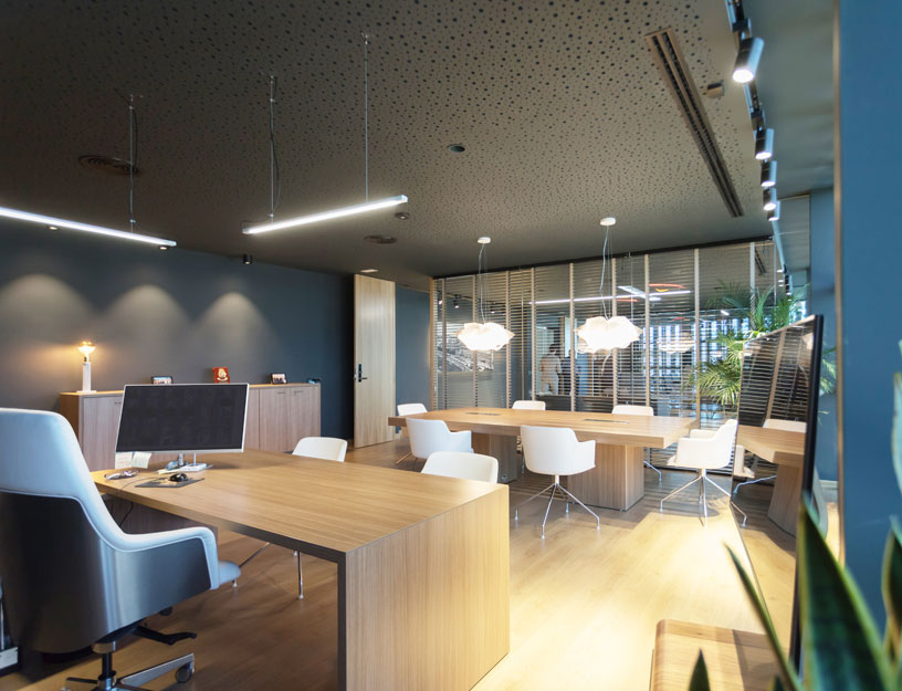 Oficinas del Grupo Sureste. Despacho y sala de reuniones