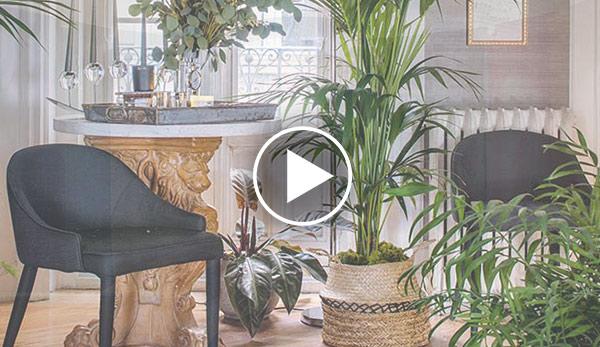 Video de Recibidor – «Abstracción natural» – Espacio Jardinespiteri