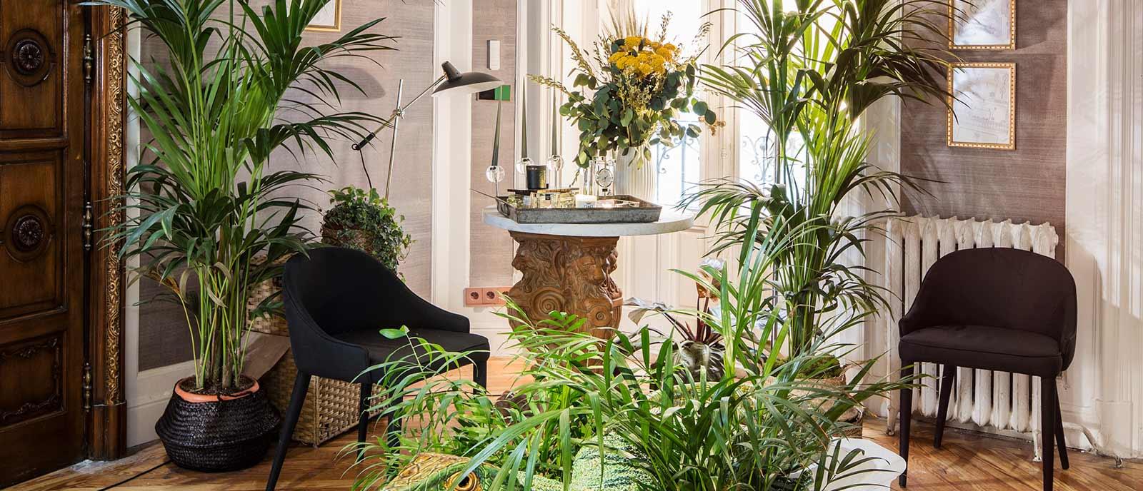 Recibidor – «Abstracción natural» – Espacio Jardinespiteri
